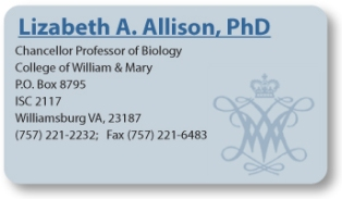 Allison-buisness-card