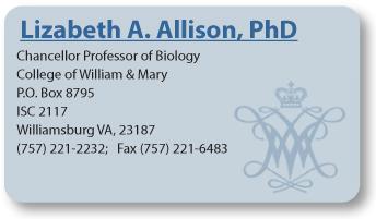 Allison-buisness-card